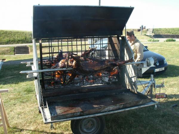 Les petits cochons Battle Field 2011